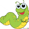 How to draw caterpillar insects