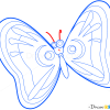 How to Draw Yellow Butterfly, Insects