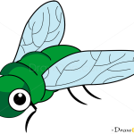 How to Draw Fly, Insects