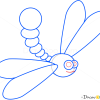How to Draw Dragonfly, Insects