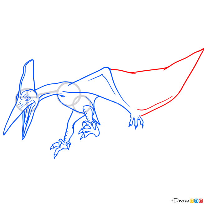 How to Draw Pteranodon, Jurassic Dinosaurs