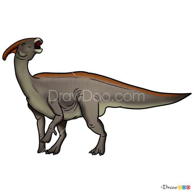 How to Draw Parasaurolophus, Jurassic Dinosaurs