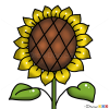 How to Draw Sunflower, Kids Draw
