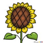 How to Draw Sunflower, Kids Draw
