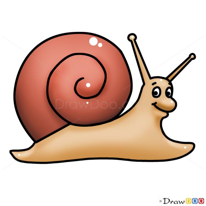 How to Draw Snail, Kids Draw