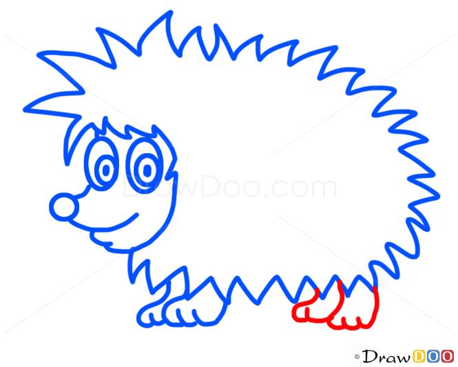 How to Draw Hedgehog, Kids Draw