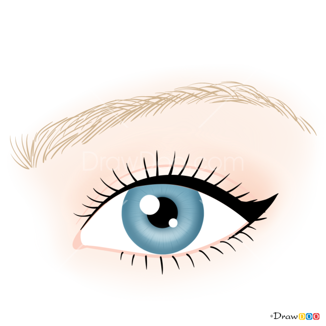 How to Draw Classic Eyeliner, Makeup