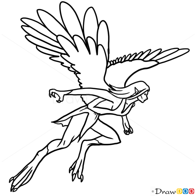 How to Draw Harpy, Monsters