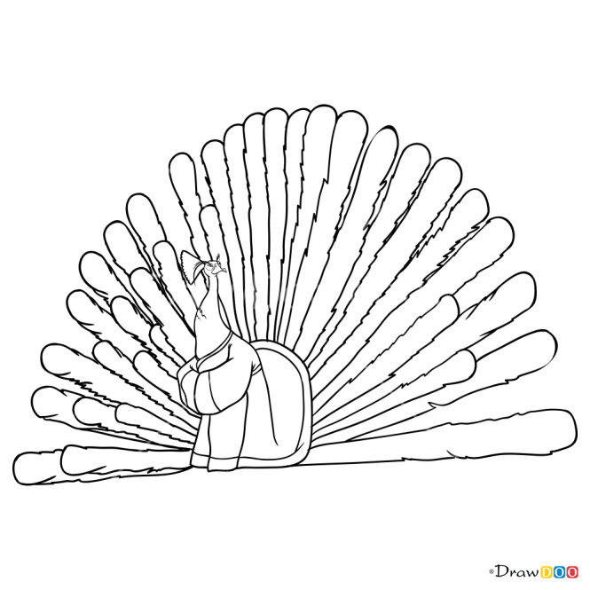 How to Draw Lord Shen, Kung Fu Panda