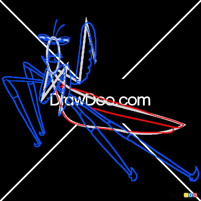 How to Draw Mantis, Kung Fu Panda
