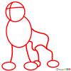 How to Draw Entei, Pokemons