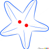 How to Draw See Star, Sea Animals