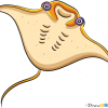 How to Draw Electric Ray, Sea Animals
