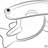 How to Draw Hammerhead Shark, Sea Animals