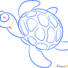 How to Draw Little Turtle, Sea Animals