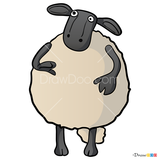 How to Draw Nuts, Shaun the Sheep