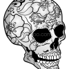 How to Draw Mexico Skull, Skeletons