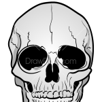 How to Draw Realistic Skull, Skeletons