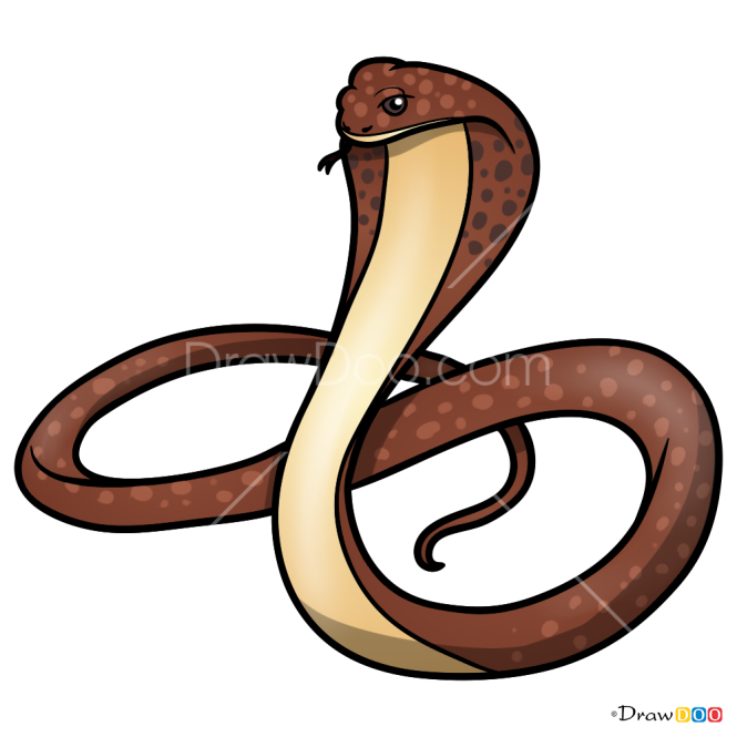 How to Draw Cobra, Snakes