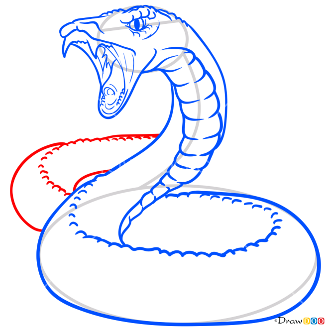 How to Draw Rattlesnake, Snakes