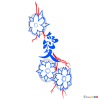 How to Draw Sakura, Tattoo Flowers