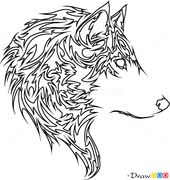 how to draw wolf tribal tattoos