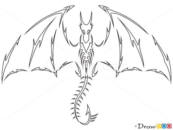 How to draw flying dragon tribal tattoos
