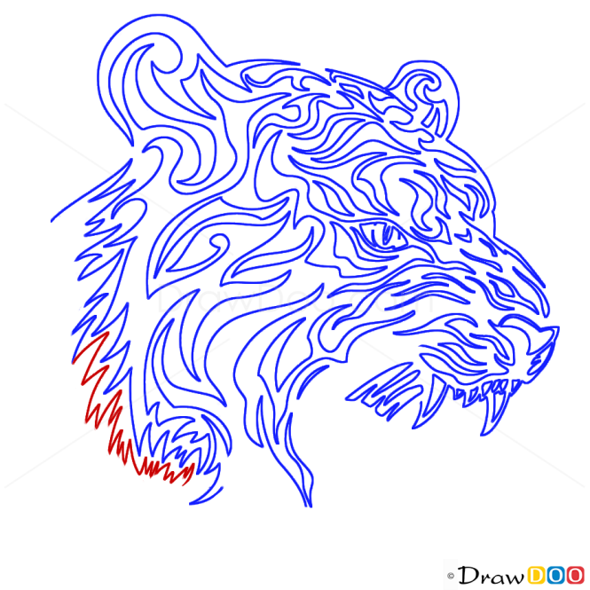 How to Draw Growling Tiger, Tribal Tattoos