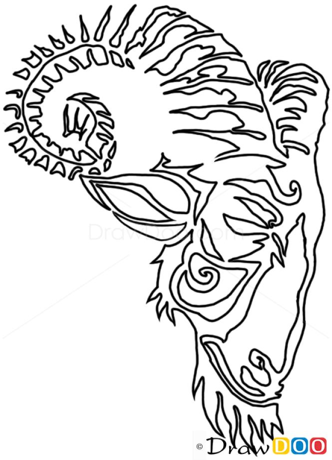 Tribal Tattoo Line Drawing : How to draw goat tribal tattoos