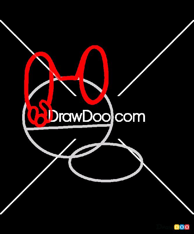 How to Draw Paco, Tokidoki