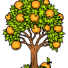 How to Draw Orange Tree, Trees