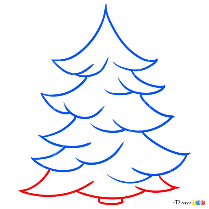 How to Draw Spruce, Trees