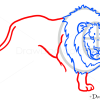 How to Draw Lion, Wild Animals