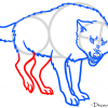 Wolf Drawings, Wild Animals, Step by Step Drawing