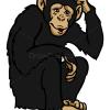 How to Draw Monkey, Wild Animals