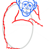 How to Draw Monkey, Wild Animals