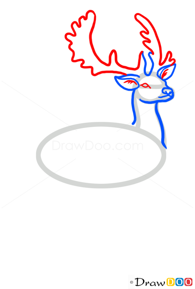 how to draw antlers step by step