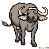 How to Draw Buffalo, Wild Animals