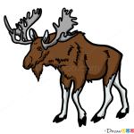 How to Draw Moose, Wild Animals