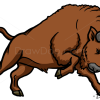 How to Draw Bison, Wild Animals