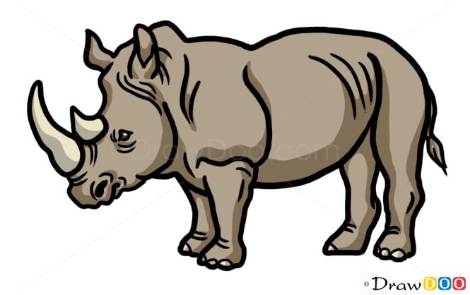 How to Draw Rhinoceros, Wild Animals