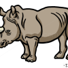 How to Draw Rhinoceros, Wild Animals