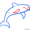How to Draw Dolphin, Wild Animals