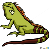 How to Draw Iguana, Wild Animals