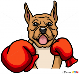 How to Draw Boxer Dog,...