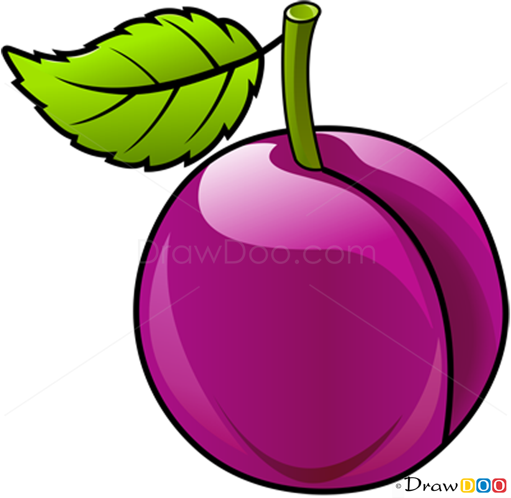 How To Draw Plum Fruits