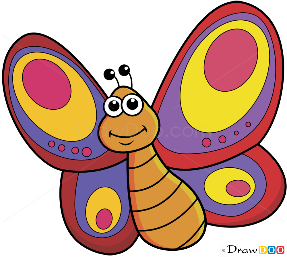 How To Draw Butterfly Insects