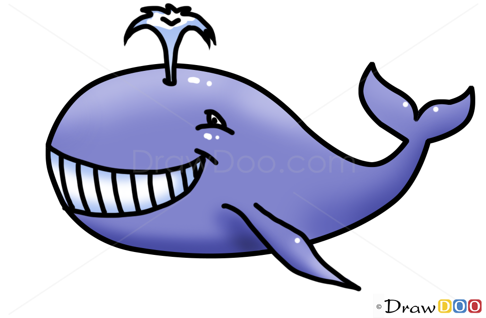 Whale drawings for kids