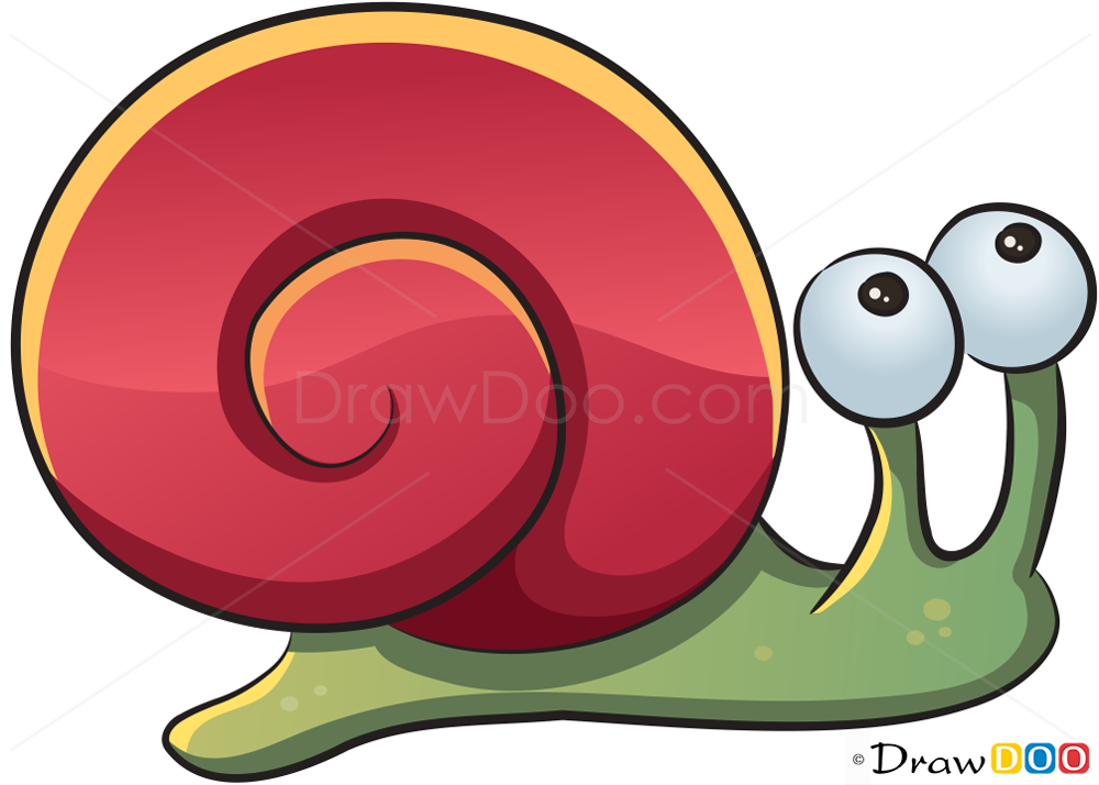 Snail drawing how to draw sea animals characters for Simple snail drawing