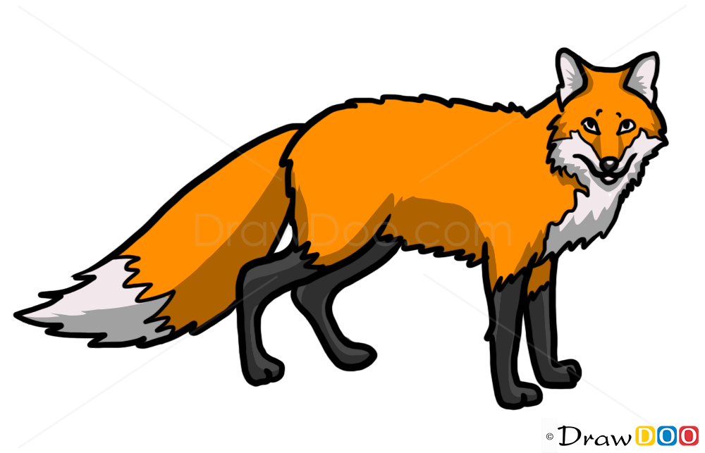 Fox Drawing Wild Animals Step By Drawing
